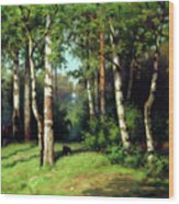 Midday Warmth In A Forest Impressionism Wood Print