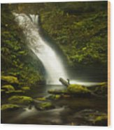 Middle Bridal Veil Falls Wood Print