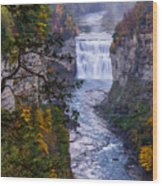 Middle Falls Letchworth State Park Wood Print by Dick Wood