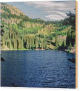 Middle Fork Lake Wood Print