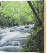 Middle Fork River Wood Print