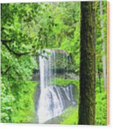 Middle North Falls 5 Wood Print