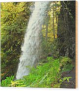 Middle North Falls Wood Print