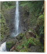 Middleham Waterfall In Dominica Wood Print