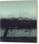 Middlethorpe Tree In Fog Gray And Green Panorama Wood Print