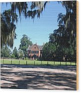 Middleton Plantation Charleston Sc Wood Print
