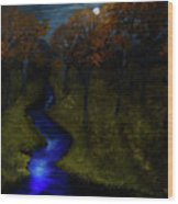Midnight Forest Wood Print