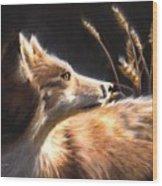Midnight Fox Wood Print