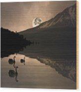Midnight Moods Swan Lake In The Moonlight Wood Print