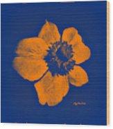 Midnight Orange Passion Flower Wood Print