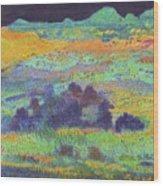 Midnight Prairie Dream Wood Print