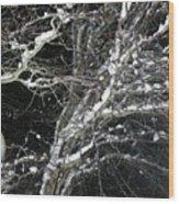 Midnight Snow 13 Wood Print