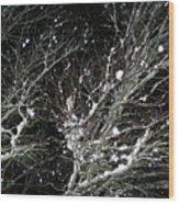 Midnight Snow 8 Wood Print