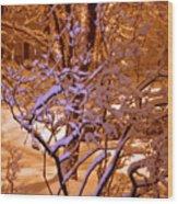 Midnight Snow Wood Print