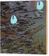 Midnight Swim Wood Print