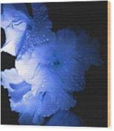 Midnite Aroma Blue Wood Print