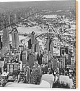 Midtown And Central Park View Wood Print