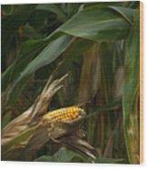 Midwest Harvest Wood Print