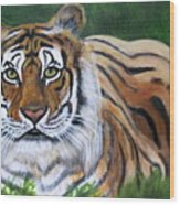 Mighty Bengal Wood Print