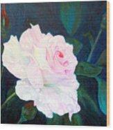 Midnight Rose Wood Print