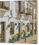 Mijas - Costa Del Sol   Spain Wood Print