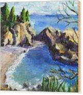 Mikes Beach Wood Print
