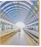 Milan Train Station Wood Print