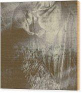 Mildew The Scarecrow Wood Print