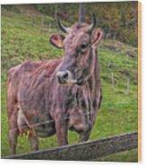 Milk Chocolate Basic Supplier Wood Print