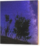 Milky Way And Silhouette Trees At Bruneau Dunes State Park Idaho Wood Print