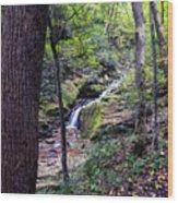 Mill Creek Falls Wood Print