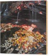 Mill Creek Wood Print