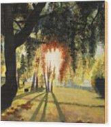 Mill Lake At Sunset Wood Print