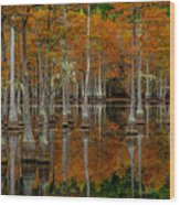 Mill Pond Reflections Wood Print