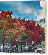 Mill Valley Autumn Wood Print