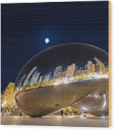 Millennium Park - Chicago Il Wood Print