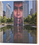 Millennium Park Fountain And Chicago Skyline Wood Print