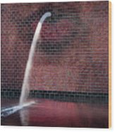 Millennium Park Fountain Chicago Wood Print