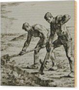 Millet Wood Print