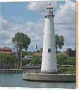 Milliken State Park Lighthouse Wood Print