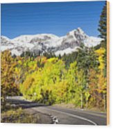 Million Dollar Highway Wood Print
