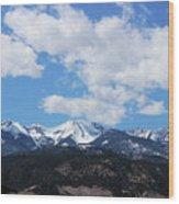 Million Dollar View Wood Print