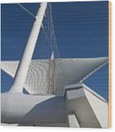 Milwaukee Art Museum Cropped Wood Print