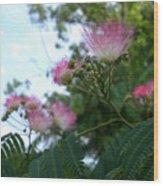 Mimosa Sky Wood Print