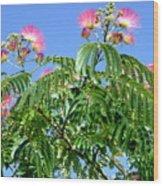 Mimosas In The Sky Wood Print