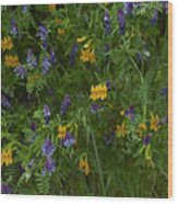 Mimulus And Vetch Wood Print