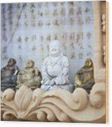 Minature Buddhas Wood Print