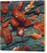 Mineral Wood Print