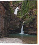 Mineral Creek Falls Wood Print