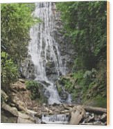 Mingo Falls In North Carolina Wood Print